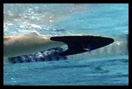 Palette Finis nuoto FreeStyler Allungo per lo stile libero